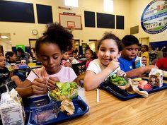 Trump Administration halts Obama era school lunch salt reduction program in schools.  http://abcnews.go.com/Health/wireStory/trump-administration-halts-school-lunch-salt-reduction-51470201