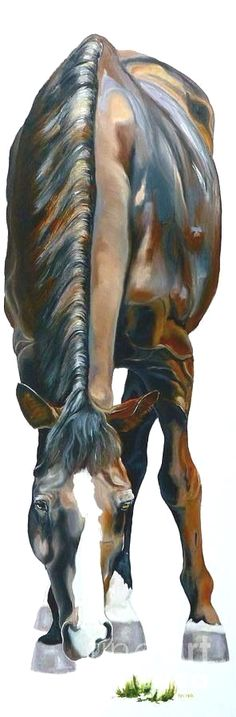 $6.99 AUD - Painting Watercolour Horse 100% Cotton Canvas Quality Print Wall Art Home Decore #ebay #Home & Garden Click VISIT above for more options CLICK Visit link to read more