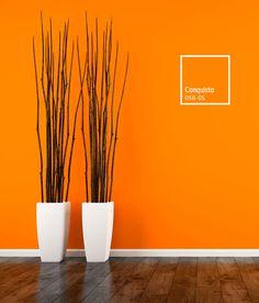 Living Room Partition Design, Room Partition Designs, Living Room Tv Unit Designs, Bedroom Wall Designs, Room Wall Colors, Room Color Schemes, Paint Colors For Living Room, Bedroom Colors, Home Wall Painting
