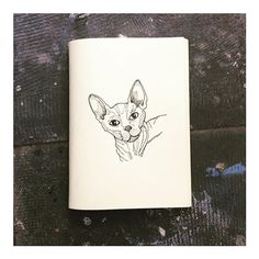 Hairless cats are cool #cat #cats #catsofinstagram #sphynx #illustration #illustrator #drawing #pendrawing #linedrawing #blacklines #pen #ink #minimal #sketch #sketchbook #fineliner #moleskine #detail #design