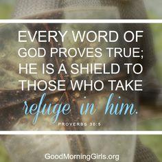Good Morning Girls Resources {Proverbs 26-30} - Women Living Well
