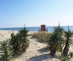 Playa de Isla Canela. Ayamonte (Huelva).