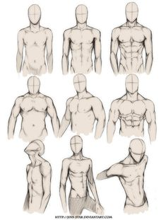 Body Type Study Reference Guide | Drawing References and Resources | Scoop.it