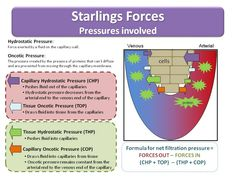 Starling's forces