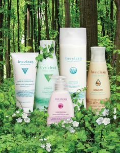 live clean products