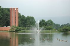 I loved overlooking this pond on the  campus at Penn State Altoona.