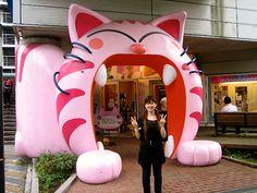 at tokyo kittyland