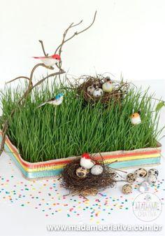 Como fazer jardim de passaros com gramado de trigo - Dicas e passo a passo com fotos - DIY birds yard - Tutorial - How to - Madame Criativa - www.madamecriativa.com.br