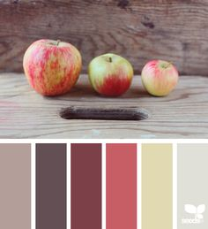 { color pick } image via: @whatiseephoto