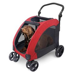 Pet Stroller, Travel Stroller, Dog Trolley, Pet Supply Stores, Buy Pets, Dog Items, Pet Travel, Medium Dogs, Pet Carriers