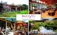 moyo kirstenbosch - DONE Dec 2015 Moyo Kirstenbosch, Cape Town, Outdoor Decor, Home Decor, Decoration Home, Room Decor, Interior Decorating
