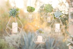 Navy and blush El Chorro wedding. Men in slate blue suits, ladies in blush-lavender chiffon full length gowns. White and blush florals with succulents galore. Wooden alter with blush chiffon curtains. Geometric Wedding, Floral Wedding, Diy Wedding, Wedding Flowers, Dream Wedding, Wedding Men, Wedding Lavender, Geometric Decor, Botanical Wedding