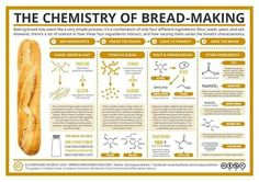 Chemistry of bread making