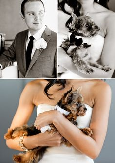 This couple married at The Cooper Square Hotel included their cute dog! Photo courtesy of Jen Huang.