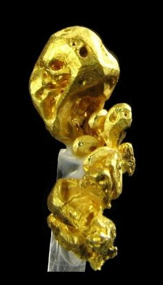 Gold -  Mockingbird Mine (Talc & Lacy claim), Colorado area, Whitlock District, Bagby-Mariposa-Mount Bullion-Whitlock District, Mother Lode Belt, Mariposa Co., California     mw