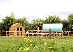 Barn Owl Camp