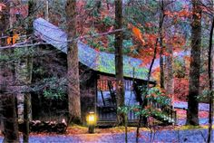 Roan Mountain Cabin by *Michael McGuire -This is a painting from a picture I took at Roan Mountain, Tenn from my cabin at dusk. The Appalachian Trail runs through Roan Mountain which is on the border of Tenn and NC. It is one of the most beautiful state parks in Tenn.