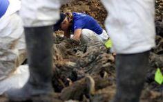 Εκκένωση τάφου με 800 πτώματα συνεργατών των Ναζί στη Σλοβενία - Newsbeast.gr