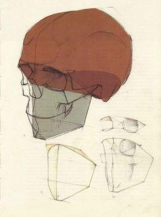 Академический рисунок. Голова