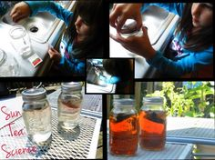 Solar science for kids: Use sun tea to teach your kids about solar energy!  http://www.ingodseconomy.com/