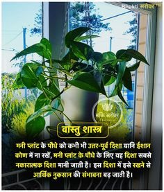 Vastu Indoor Plants for Home – Indoor Design Pictures Vedic Mantras, Hindu Mantras, Sanskrit Quotes, Hindi Quotes, General Knowledge Facts, Knowledge Quotes, Tips For Happy Life, Indian House Plans, Hindu Rituals
