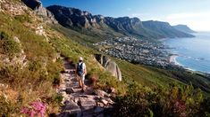 Stories about Cape Town