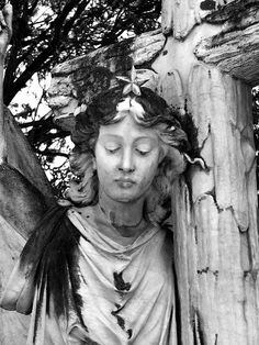 Spanish angel in an English cemetery