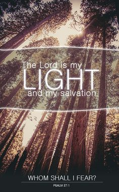 The Lord is my light and my salvation; whom shall I fear? The Lord is the stronghold of my life; of whom shall I be afraid? (Psalm 27:1 ESV)