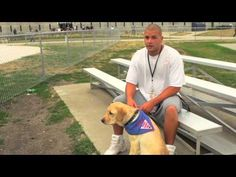 They Put A Dog Inside His Jail Cell And Start Filming. Watch What The Inmate Does. Program for inmates to train dogs.