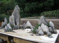 rock garden with bonsai foliage Bonsai Forest, Bonsai Art, Bonsai Garden, Bonsai Trees, Mini Zen Garden, Garden Art, Forest Garden, Decoration Plante, Succulent Gardening