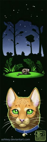 ThunderClan Bookmark: Rusty's Dream by ashkey.deviantart.com on @DeviantArt