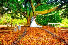 rustic outdoor ceremony at Wellington Forest Cottages in the Ferguson Valley, Bunbury, Western Australia. Styling and props by Ferguson Valley Events.