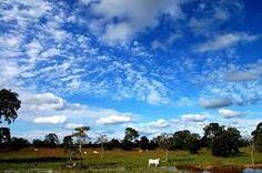 Resultado de imagem para imagens do Brasil paradisiacas