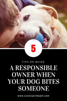 5 Tips on Being a Responsible Owner When Your Dog Bites Someone | Savory Prime Pet Treats