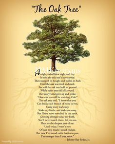 The Oak Tree Poem Wall Art Nature Wall Art Encouraging Tree Poem, Nature Quotes, Art Nature, Nature Tree, Peace Quotes, Just In Case, Just For You, Tree Quotes, Quotes About Trees