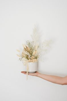 Magical dried and preserved flower arrangements - explore our range in store. How To Preserve Flowers, Grasses, Dried Flowers, Preserves, Flower Arrangements, Interior Decorating, Student, Ceramics, Explore