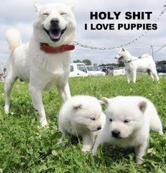 I LOVE PUPPIES!