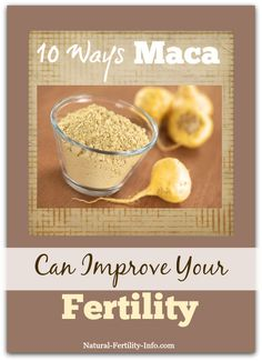 Acupressure Pregnancy 10 Ways Maca Can Improve Your Fertility - The nourishing superfood and medicinal herb known as Maca has been shown to support fertility in a variety of ways. Find out if it may be beneficial for you. Acupuncture Fertility, Fertility Foods, Maca Root Fertility, Boost Fertility, Pcos Infertility, Infertility Treatment, Natural Fertility Info, Natural Healing, Pregnancy Help