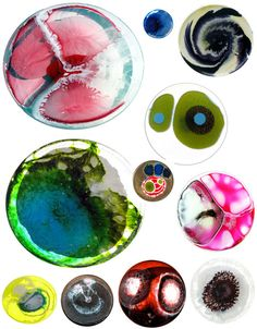 Petri Dish Portraits: Eco-Art That Will Literally Grow On You! | WebEcoist
