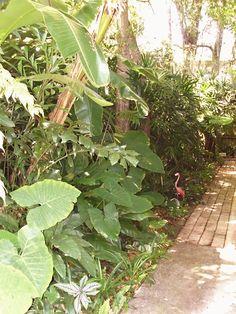 No Minimalist Here: Garden Tour