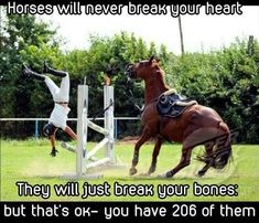 Funny Farm Animals - Horses Funny - Funny Horse Meme - - The post Funny Farm Animals appeared first on Gag Dad. Funny Horse Memes, Funny Horse Pictures, Funny Animal Jokes, Funny Horses, Cute Horses, Cute Funny Animals, Memes Humor, Cats Humor, Equestrian Memes
