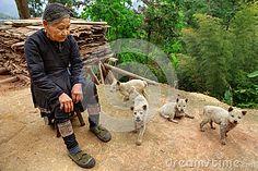 GUIZHOU PROVINCE; CHINA - Older Chinese lady in Basha Miao Ethnic minority village
