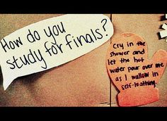 Stage 1 of final year exams this week. So scary