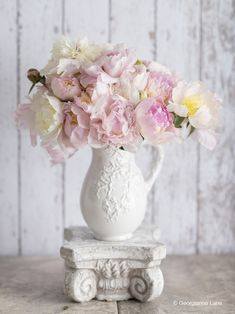 Pretty pink and white Peonies