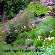 Learn all about landscaping steep slopes, planting design and types for hillside landscaping, landscape paths and steps, terracing