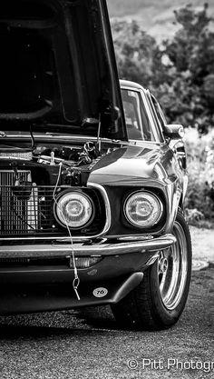 Hot Cars