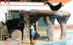 jardim zoologico 14.jpg