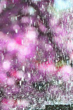 Purple Rain - Anahi DeCanio - ArtyZen Studios