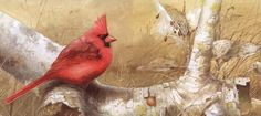 Nature - Katie Barwell - Picasa Web Albums