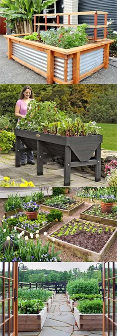 Detailed guide on how to build raised bed gardens! Lots of tips and ideas on best designs, soil, and materials for productive & beautiful DIY raised beds!